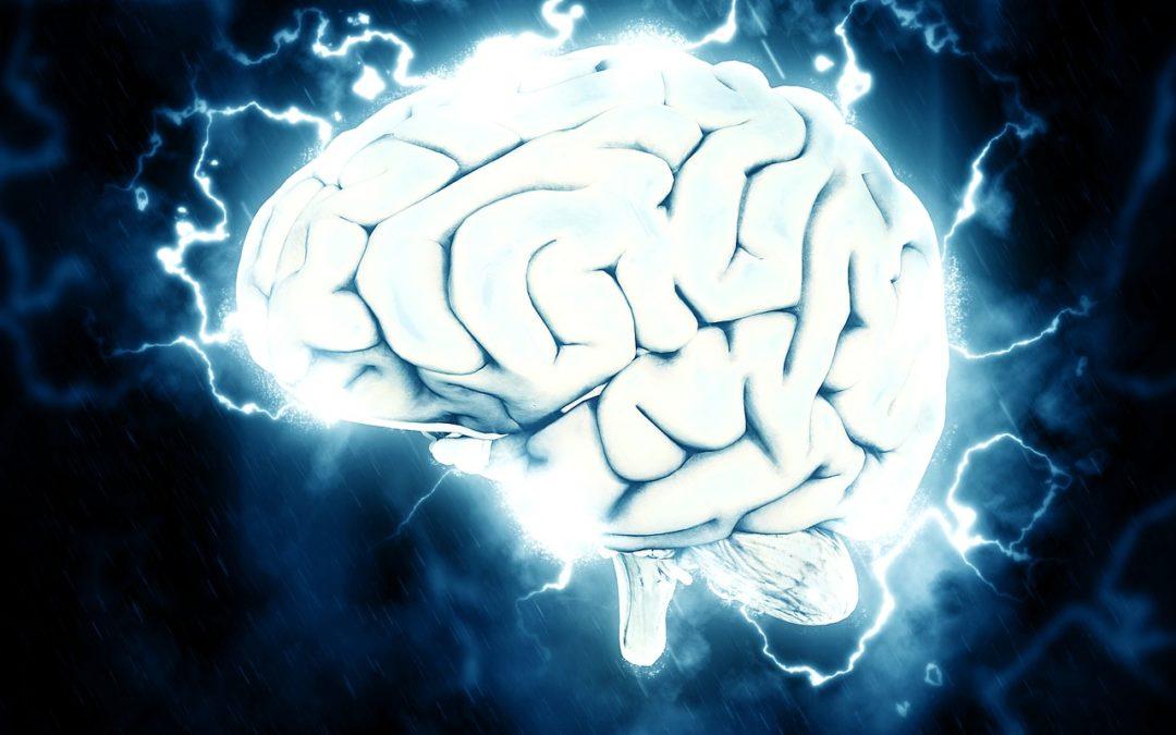 4 zajímavosti o mozku, které je dobré znát!